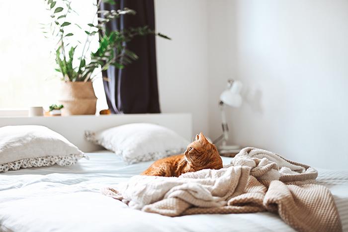 Indret soveværelset med skøn sengetøj