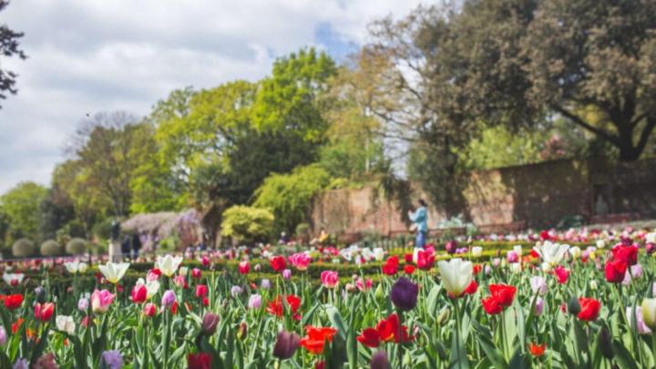 Gør haven klar til foråret med disse råd